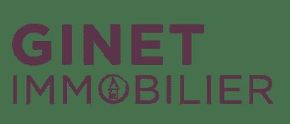 Ginet logo